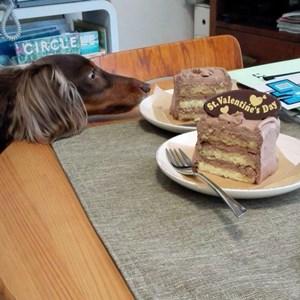 TOPSチョコケーキ