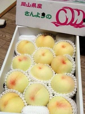 清水白桃2016