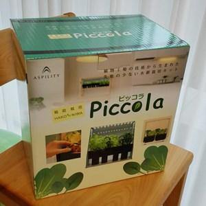 箱庭栽培ピッコラ
